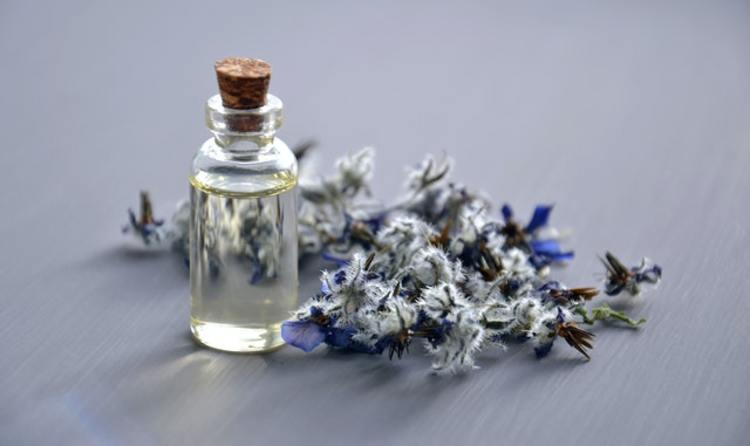 Кои са най-използваните нотки в парфюмерията?
